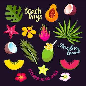Conjunto de frutas tropicales de verano, cócteles y hojas