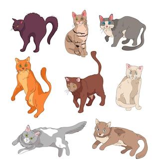 Conjunto de gatos graciosos en diferentes posiciones.