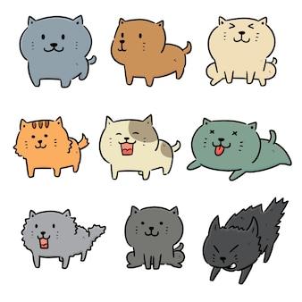 Conjunto de gatos
