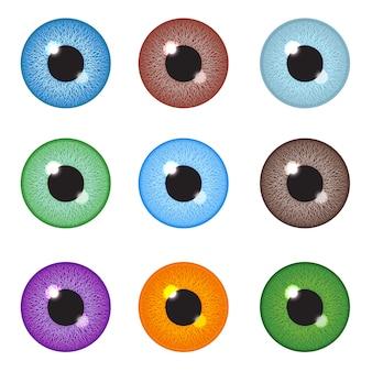Conjunto de globo ocular realista