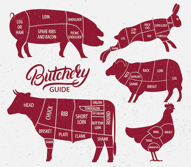Conjunto de granja de animales. corte de ternera, cerdo, cordero, pollo.