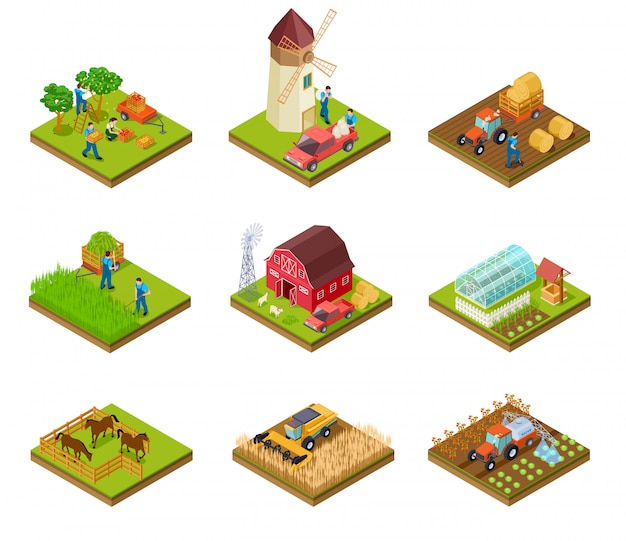 Conjunto de granja isométrica