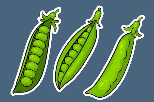 Conjunto de guisantes. vainas de guisantes verdes cerradas y abiertas. en una pegatina de estilo de dibujos animados. ilustración de vector de diseño y decoración.