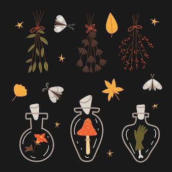 Conjunto de halloween de botellas mágicas con polilla de poción mágica ramos de otoño secos