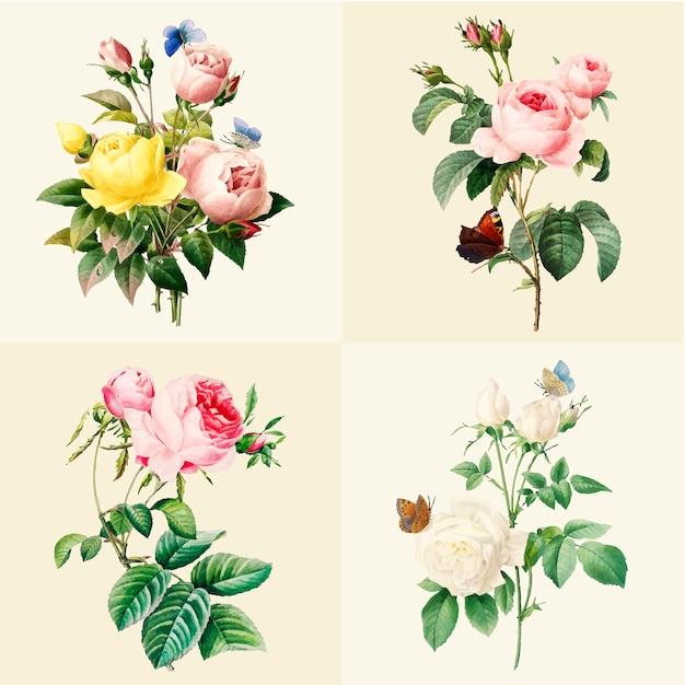 Conjunto de hermosas rosas florecientes