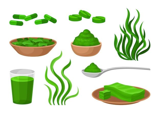 Conjunto de herramientas curativas de algas.