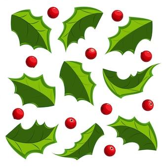 Conjunto de hojas y bayas de muérdago de navidad