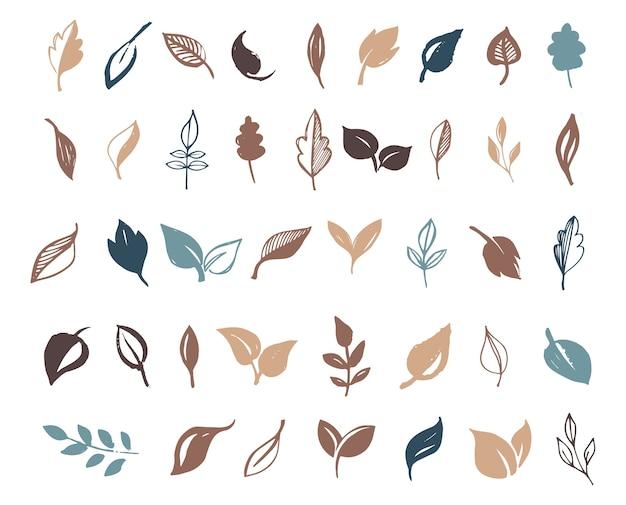 Conjunto de hojas dibujadas a mano, hoja verde, bocetos y garabatos de hojas y plantas, colección de vectores de hojas verdes