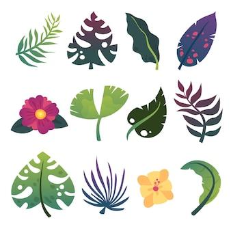 Conjunto de hojas y flores exóticas de verano