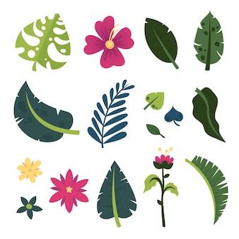 Conjunto de hojas y flores tropicales de verano