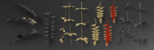 Conjunto de hojas negras y doradas tropicales.