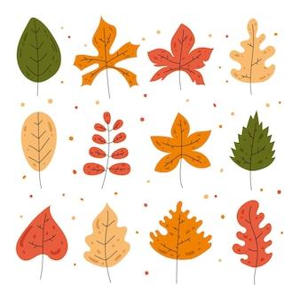 Conjunto de hojas de otoño dibujadas a mano