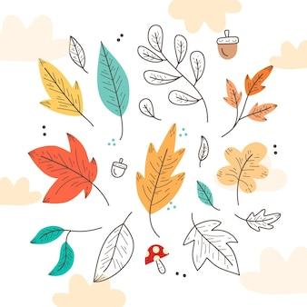 Conjunto de hojas de otoño dibujado a mano