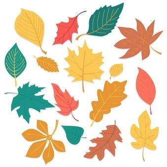Conjunto de hojas de otoño de diseño plano