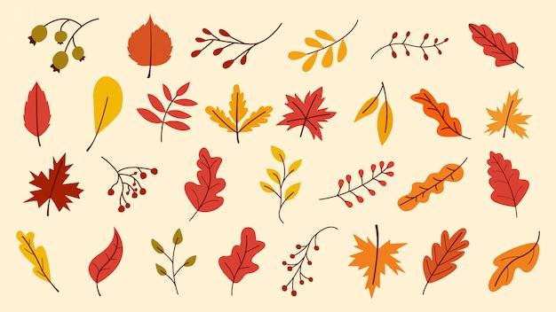 Conjunto de hojas de otoño, ilustración vectorial, hojas de otoño o follaje de otoño