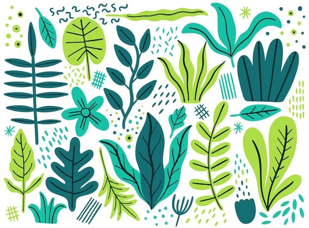 Conjunto de hojas planas. plantas tropicales aisladas sobre fondo blanco