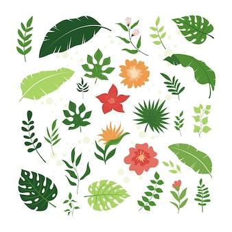 Conjunto de hojas tropicales y elementos florales, estilo simple y moderno.