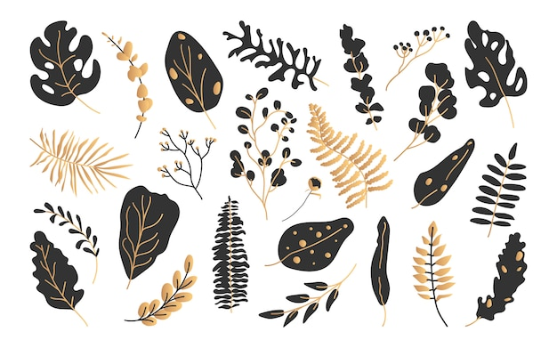 Conjunto de hojas tropicales exóticas de oro negro.
