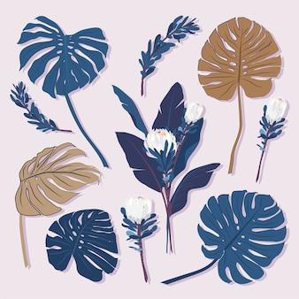 Conjunto de hojas tropicales
