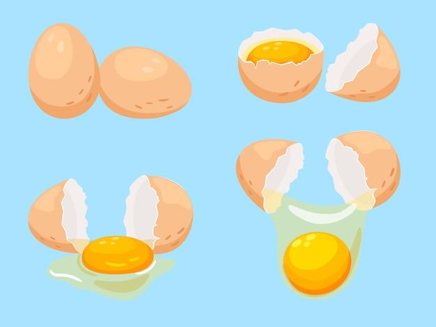 Conjunto de huevos marrones