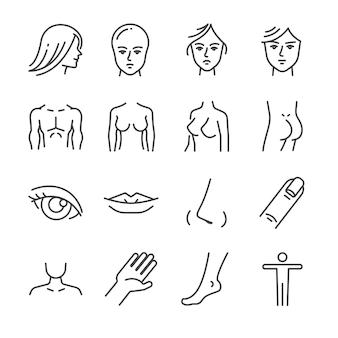 Conjunto de icono de línea de partes de cuerpo de salón de belleza.