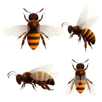 Conjunto de iconos aislados de abejas de miel