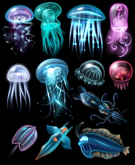 Conjunto de iconos de animales bajo el agua