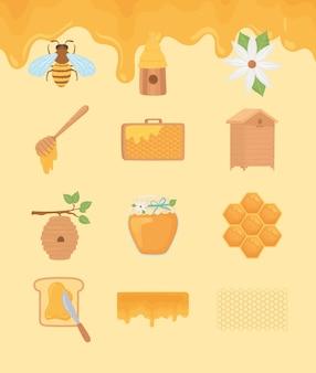 Conjunto de iconos de apicultura