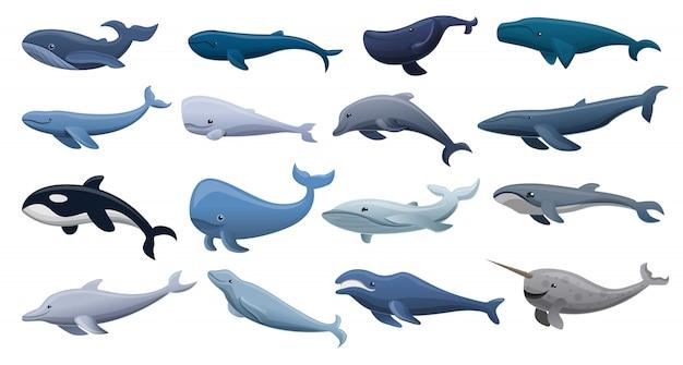 Conjunto de iconos de ballena, estilo de dibujos animados