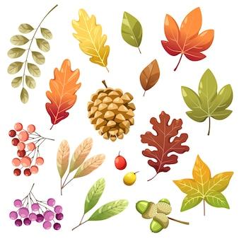 Conjunto de iconos con bayas, nueces, hojas y piñas secas