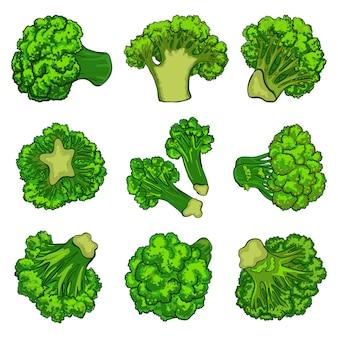 Conjunto de iconos de brócoli