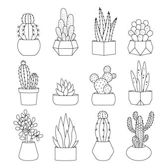 Conjunto de iconos de cactus y suculentas de estilo de línea