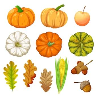 Conjunto de iconos con calabaza, maíz, nueces y hojas aisladas en blanco.