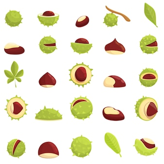 Conjunto de iconos de castaña. conjunto de dibujos animados de iconos de castaña para web