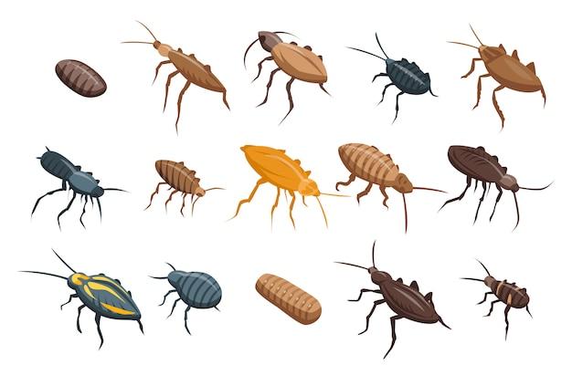 Conjunto de iconos de cucarachas, estilo isométrico