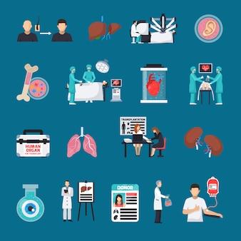 Conjunto de iconos decorativos de trasplante