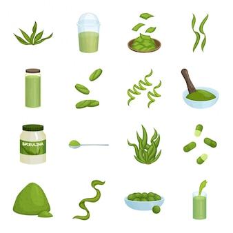 Conjunto de iconos de dibujos animados de espirulina