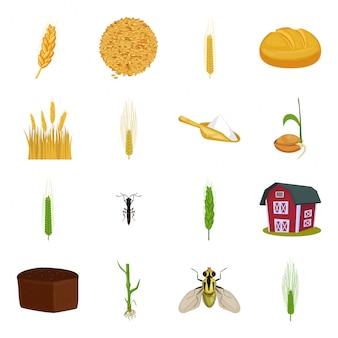 Conjunto de iconos de dibujos animados de trigo