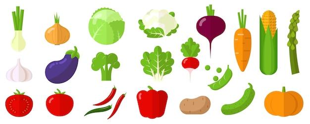Conjunto de iconos y elementos de verduras crudas frescas.