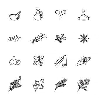 Conjunto de iconos de especias, condimentos y hierbas.