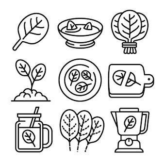 Conjunto de iconos de espinacas, estilo de contorno
