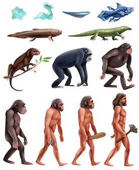 Conjunto de iconos de evolución de darwin