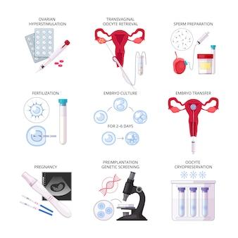 Conjunto de iconos de fertilización in vitro plana aislada con fertilización, transferencia de cultivo de embriones durante el embarazo y otras descripciones