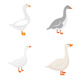 Conjunto de iconos de ganso