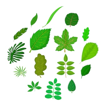 Conjunto de iconos de hojas verdes, estilo de dibujos animados