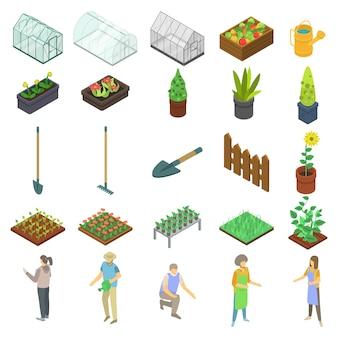 Conjunto de iconos de invernadero casa, estilo isométrico