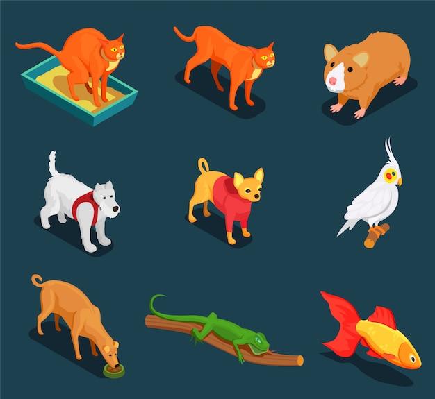 Conjunto de iconos isométricos de animales de compañía