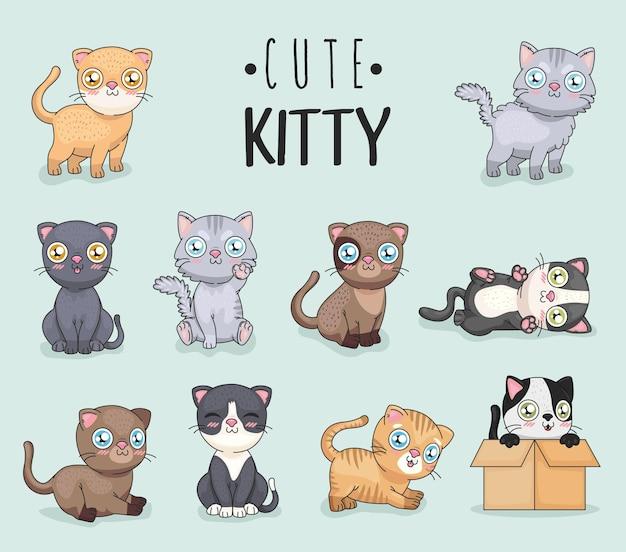 Conjunto de iconos de lindo gatito