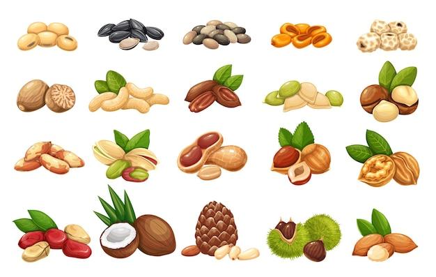 Conjunto de iconos de nueces, semillas y granos