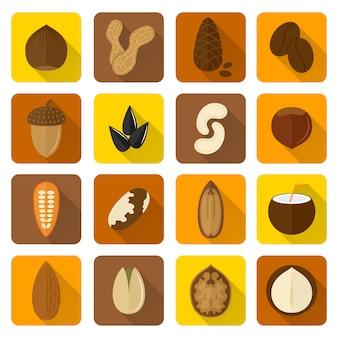 Conjunto de iconos de nueces